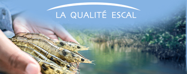 La qualité Escal
