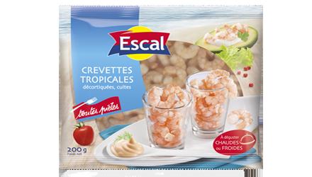Crevettes tropicales